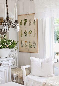 Love the botanical print