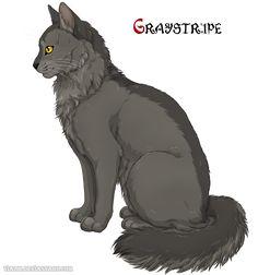 Graystripe by Vialir.deviantart.com on @DeviantArt