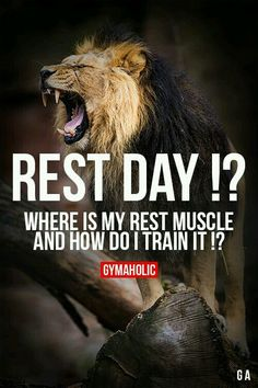 Rest day they say?? Lol