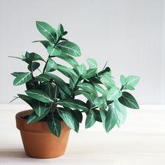 Coup de coeur : Un DIY de plantes en papier