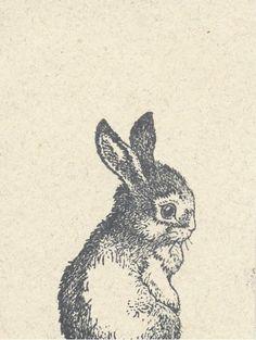bunny bunny don't be sad.
