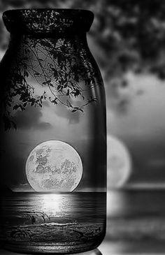 Moon on bottle😉 Moon Photos, Moon Pictures, Moon Pics, Luna Moon, Moon Dance, Shoot The Moon, Beautiful Flowers Wallpapers, Moon Photography, Good Night Moon