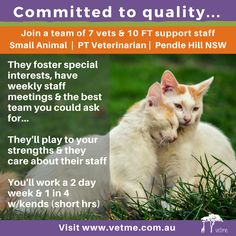 PT Veterinarian, Small Animal, Pendle Hills NSW: If you'd like to work a 2-day week & I in 4 weekends in a practice that cares about their team and is keen to play to the strengths of their staff and foster special interests, you need to find out more on Vetme….