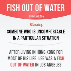 """Fish out of water"" is someone who is uncomfortable in a particular situation. #idiom #idioms #slang #saying #sayings #phrase #phrases #expression #expressions #english #englishlanguage #learnenglish #studyenglish #language #vocabulary #efl #esl #tesl #tefl #toefl #ielts #toeic #fish"