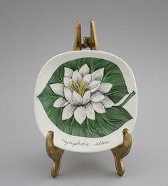 Stig Lindberg, Glass Ceramic, Water Lilies, Illustration Art, Illustrations, Scandinavian Design, Finland, Fiber Art, Mid-century Modern