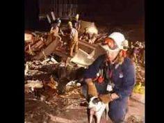 9-11-2001