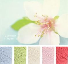 Sky Blue, Soft Lime, Ivory, Shell Pink, Shrimp Yarn Color Combinations, Colour Schemes, Colour Pallette, Color Balance, Design Seeds, Coordinating Colors, World Of Color, Yarn Colors, Color Theory