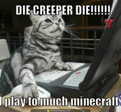 Dogs will accept you as the boss, Cats want to see your resume! - LOLcats is the best place to find and submit funny cat memes and other silly cat materials to share with the world. We find the funny cats that make you LOL so that you don't have to. Minecraft Funny, How To Play Minecraft, Minecraft Stuff, Funny Cats, Funny Animals, Cute Animals, Animal Jokes, Crazy Animals, Animal Funnies