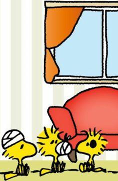 Bandaid Meu Amigo Charlie Brown, Charlie Brown And Snoopy, Snoopy Comics, Fun Comics, Peanuts Cartoon, Peanuts Snoopy, Snoopy Love, Snoopy And Woodstock, Cartoon Network Adventure Time