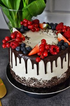 Cake Decorating, Food And Drink, Sweets, Baking, Holiday, Recipes, Vacations, Gummi Candy, Candy