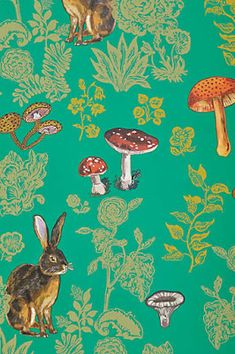 Nathalie Lete Mushroom Forest Wallpaper in Multi Size: One Size Decor from Anthropologie. Saved to Things I want as gifts. Forest Wallpaper, Home Wallpaper, Rabbit Wallpaper, Bohemian Wallpaper, Quirky Wallpaper, France Wallpaper, Bright Wallpaper, Amazing Wallpaper, Interior Wallpaper
