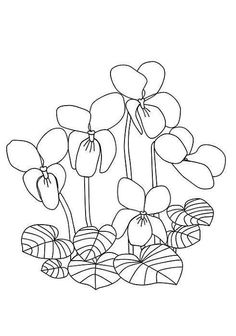 Tangle Patterns, Hand Embroidery Patterns, Ribbon Embroidery, Embroidery Designs, Lilac Flowers, Colorful Flowers, Coloring Sheets, Coloring Pages, Fabric Painting