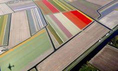 """In primavera l'Olanda diventa un quadro vivente di Piet Mondrian. Nelle immagini aeree, il Keukenhof Park, considerato il più grande giardino al mondo per i milioni di tulipani coltivati, si trasforma in una gigantesca """"tela"""" dove i colori e le geometrie della primavera si interseca"""