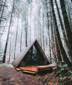 Beautiful cabin in the woods. What would you rate it? 📷@tim_urpman
