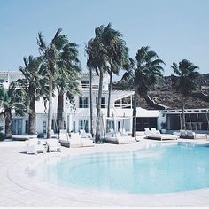 future house  so dreamy look at those palms & that blue on white goodness  #sourceunknown