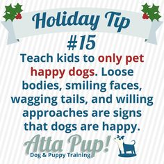Atta Pup Training Blog: Holiday Tip #15-------Only pet a happy dog who willingly approaches you. What does a happy dog look like? http://www.doggonesafe.com/Signs_of_a_Happy_Dog