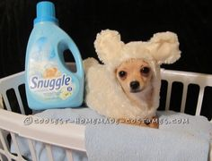 Easy, Cheap Snuggle Bear Costume For Pets... This website is the Pinterest of costumes