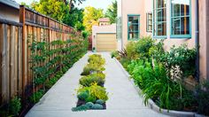 Garden in a driveway | On a driveway, atop a doghouse, up a wall—here's how to garden in small and unusual spaces