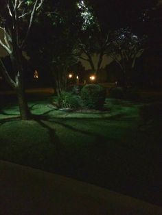 Landscape Lighting Dallas