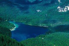 Sei in #ValDiNon, non puoi perderti una passeggiata attorno al lago! Un tuffo se è abbastanza caldo non si può non fare... acqua cristallina