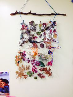 Fall classroom Decor. One of my coworkers took her children on a nature walk. They found all different types of leaves Treebark pinecones and branches. She used contact paper to keep everything in place and used a branch and ribbon to hang it! LOOKS AMAZING IF YOU ASK ME! Way to be creative Ms.Christine.