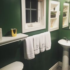 The finished product: Sherwin-Williams kale green in semi-gloss.