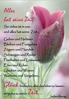 Happy Quotes to Help You Forget Your Worries – Viral Gossip Home Quotes And Sayings, Wise Quotes, Happy Quotes, Quotes To Live By, Positive Quotes, Happiness Quotes, German Words, Life Words, Christian Quotes