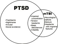 Image result for ptsd charts graphs