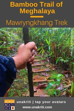 On your next tour to Northeast India, try the Bamboo Trail of Meghalaya and meet the King of Stones! Do the Mawryngkhang Trek. World Travel Guide, Asia Travel, Travel Guides, Backpacking India, Northeast India, Places To Travel, Travel Destinations, Tour Guide, Travel Pictures
