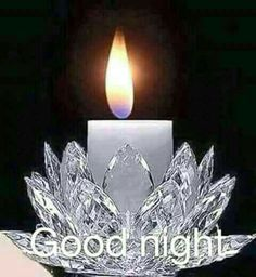 Good night sister and all, have a peaceful sleep 🌹🌷🌳🌹🌲 Good Night Love Images, Good Night Image, Good Morning Good Night, Good Night Prayer, Good Night Blessings, Night Qoutes, Good Night Quotes, Evening Quotes, Good Night Friends