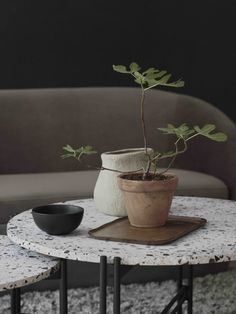 Designers of Swedish brand Ellos Home figured out that dark shades diluted with warm tones and dried flowers, give very pleasant and stylish interior ✌Pufikhomes - source of home inspiration Living Room Decor Inspiration, Interior Design Inspiration, Scandinavian Interior, Scandinavian Style, Classic Living Room, Scandi Style, Interior Photography, Living Room Interior, Interior Livingroom