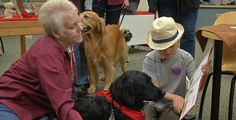 Dogs help children improve their reading | Local News  - Home