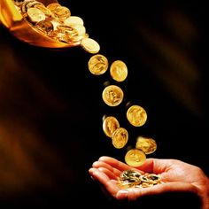 My Private Bullion specializes in finding specific Gold and Silver Coins that will increase in value over time, well above bullion coins of similar prices. Gold Bullion Bars, Bullion Coins, Raining Money, Dividend Investing, Dividend Stocks, Money Stacks, Gold Money, Money Spells, Gold Coins