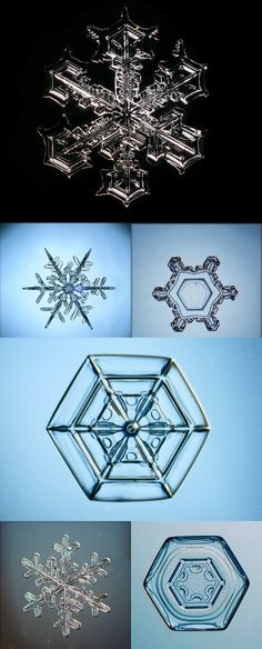 Macro snowflake photos by Sergey Kichigin