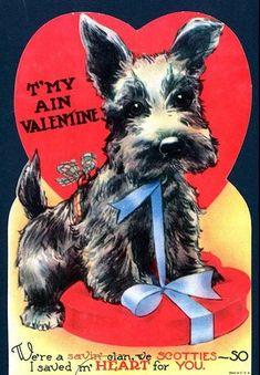 Valentine Scottie dog valentine / Scottish terrier