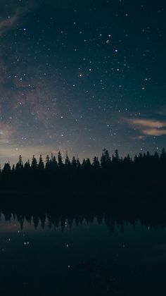 A sky full of stars😍😍 Tumblr Wallpaper, Night Sky Wallpaper, Dark Wallpaper, Galaxy Wallpaper, Wallpaper Backgrounds, Sky Full Of Stars, Star Sky, Ft Tumblr, Dark Skies
