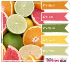 Citrus inspired color palette. The website has a few other beautiful color palettes and is a quilting inspired website.