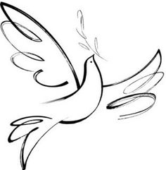 Dove of peace and beauty