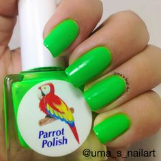 Parrot Polish Glow Mr Yuk - BNNU - $10
