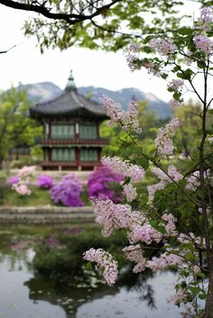 Korean Spring by Leigh MacArthur on 500px Gyeongbok Palace in Seoul, South Korea.