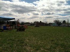 Urban farming in Newark New Jersey.