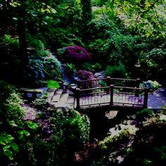 Cleveland Botanical Garden Cleveland Botanical Gardens Pinterest Gardens Botanical