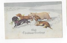 1917 CHRISTMAS post card 3 Dachshunds running with a Pig