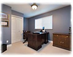 wall color- benjamin moore 1593 adagio - office paint color