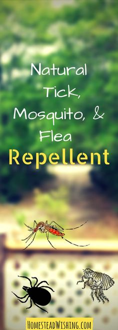 Looking for a natural tick, mosquito, and flea repellent? Homemade repellent. Tick repellent. Mosquito repellent. Flea repellent. | http://homesteadwishing.com/natural-tick-mosquito-and-flea-repellent/ | Homestead Wishing, Author Kristi Wheeler | natural-tick-repellent, DIY-bug-spray |