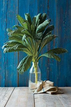 Five Southern Ways to Use Kale