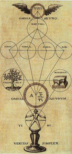 The Tree of Pans - Alchemy and Mysticism from the Hermetic Museum Author: Theophilius Schweighart Work: Speculum sophicum Rhodostauroticum Date: 1604