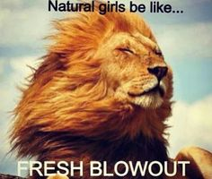 Fresh blowout