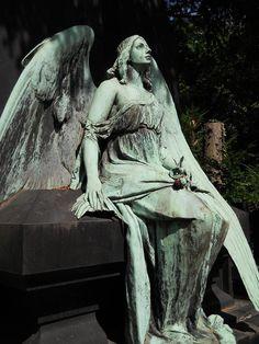 Google-Ergebnis für http://img.fotocommunity.com/images/Friedhoefe/Engel-und-Co/Engel-auf-dem-Friedhof-Melaten-Koeln-a29207342.jpg