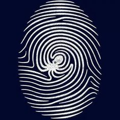 Poulpy fingerprint.